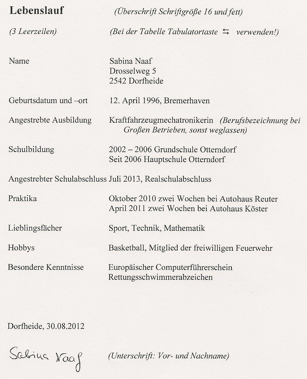 lebenslauf download - Lebenslauf Schriftgrose